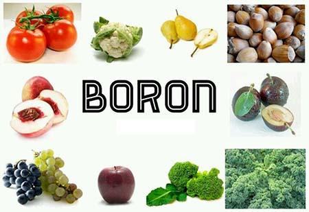 boron dưỡng chất tăng chiều cao thiết yếu